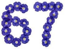 Arabiskt tal 67, sextiosju, från blåa blommor av lin, isola Arkivbild