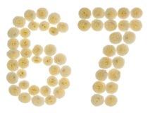 Arabiskt tal 67, sextiosju, från kräm- blommor av chrysanthe Arkivbilder