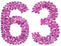 Arabiskt tal 63, sextiotre, från blommor av lilan som isoleras Fotografering för Bildbyråer