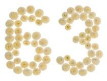 Arabiskt tal 63, sextiotre, från kräm- blommor av chrysanthe Royaltyfria Bilder