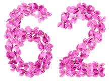Arabiskt tal 62, sextiotvå, från blommor av altfiolen som isoleras på Royaltyfri Fotografi