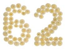 Arabiskt tal 62, sextiotvå, från kräm- blommor av chrysanthemuen Royaltyfri Fotografi