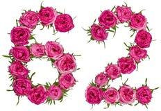 Arabiskt tal 62, sextiotvå, från röda blommor av steg, isolerat Royaltyfri Bild