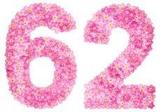 Arabiskt tal 62, sextiotvå, från rosa förgätmigej blommar, I Royaltyfria Bilder
