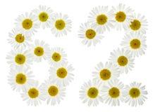 Arabiskt tal 62, sextiotvå, från vita blommor av kamomillen, I Fotografering för Bildbyråer