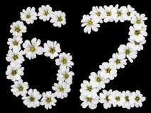 Arabiskt tal 62, sextiotvå, sextio, sex, två, från den vita blomman Royaltyfri Fotografi