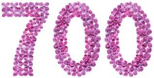 Arabiskt tal 700, sjuhundra, från blommor av lilan, isolat Arkivfoton
