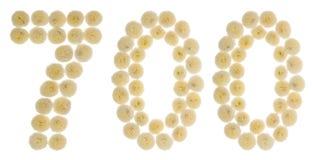 Arabiskt tal 700, sjuhundra, från kräm- blommor av chrysan Arkivbild