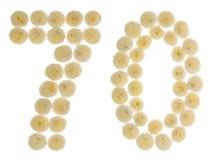 Arabiskt tal 70, sjuttio, från kräm- blommor av krysantemumet, Royaltyfria Foton