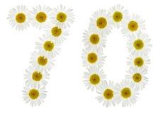 Arabiskt tal 70, sjuttio, från vita blommor av kamomillen, iso Royaltyfria Foton