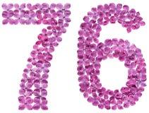 Arabiskt tal 76, sjuttiosex, från blommor av lilan som isoleras Fotografering för Bildbyråer