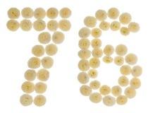Arabiskt tal 76, sjuttiosex, från kräm- blommor av chrysanthe Royaltyfria Bilder