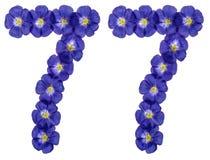 Arabiskt tal 77, sjuttiosju, från blåa blommor av lin, iso Royaltyfria Bilder