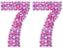 Arabiskt tal 77, sjuttiosju, från blommor av lilan, isolat Arkivfoto
