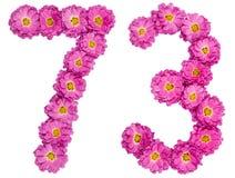 Arabiskt tal 73, sjuttiotre, från blommor av krysantemumet, Arkivfoto
