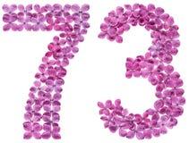 Arabiskt tal 73, sjuttiotre, från blommor av lilan, isolat Arkivbilder