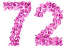 Arabiskt tal 72, sjuttiotvå, från blommor av altfiolen som isoleras Arkivfoton