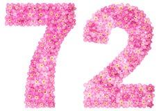 Arabiskt tal 72, sjuttiotvå, från rosa förgätmigej blommar, Arkivbild