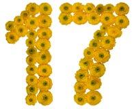 Arabiskt tal 17, sjutton, från gula blommor av smörblomman, Royaltyfri Fotografi