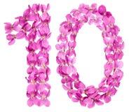 Arabiskt tal 10, tio, från blommor av altfiolen som isoleras på vit Royaltyfri Foto