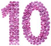 Arabiskt tal 10, tio, från blommor av lilan som isoleras på vit Arkivbilder