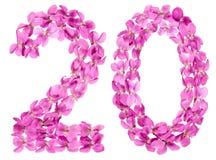 Arabiskt tal 20, tjugo, från blommor av altfiolen som isoleras på wh Arkivbilder