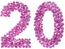 Arabiskt tal 20, tjugo, från blommor av lilan som isoleras på wh Fotografering för Bildbyråer