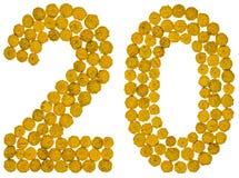 Arabiskt tal 20, tjugo, från gula blommor av tansyen, isolat Royaltyfria Bilder