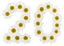 Arabiskt tal 20, tjugo, två, från vita blommor av kamomillen, Arkivbild