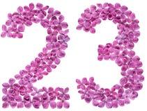 Arabiskt tal 23, tjugotre, från blommor av lilan som isoleras arkivbilder