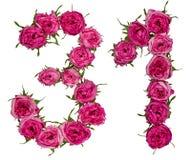 Arabiskt tal 31, trettio en, från röda blommor av rosen, isolat royaltyfri bild