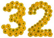 Arabiskt tal 32, trettiotvå, från gula blommor av smörblomman, Royaltyfri Bild