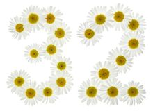 Arabiskt tal 32, trettiotvå, från vita blommor av kamomillen, Royaltyfri Foto