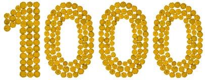 Arabiskt tal 1000, tusen, från gula blommor av tansyen, Royaltyfri Bild