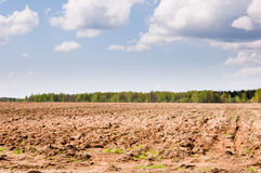 Arable. Tractor plowed field in the spring morning Royalty Free Stock Image