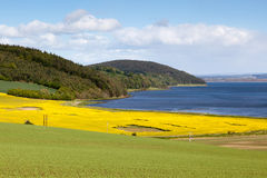 Arable farming fields near Munlochy Bay. In Scotland Stock Photos