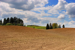 Arable field. In spring, Lithuania Stock Photography