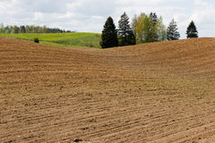 Arable field Royalty Free Stock Image
