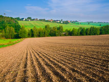 Arable field. Kansas wheat, cultivation field and farm on horizon Royalty Free Stock Photography
