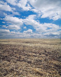 Arable field. Against the sky with clouds Royalty Free Stock Images