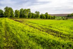 Arable field farm. Agricultural landscape of spring arable and green areas Royalty Free Stock Photo
