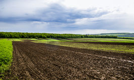 Arable field farm. Agricultural landscape of spring arable and green areas Royalty Free Stock Photography