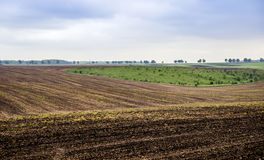 Arable field farm. Agricultural landscape of spring arable and green areas Stock Image
