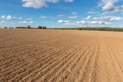 Arable field farm and blue sky. Arable field farm and blue summer sky Royalty Free Stock Photo