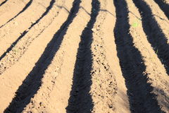 Arable field farm. The ploughed field Royalty Free Stock Photography
