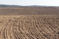 Arable field. Plowed agricultural arable land. Prepared land for sowing of crop Royalty Free Stock Photo