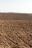 Arable field. Plowed agricultural arable land. Prepared land for sowing of crop Stock Image