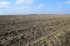 Arable field. The plowed field. Spring processing of farmlands Stock Photography