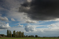 Arable field and poplars beneath a shower Stock Photo