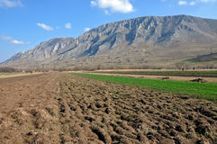 Arable field at spring. With a mountain in the back Royalty Free Stock Photography